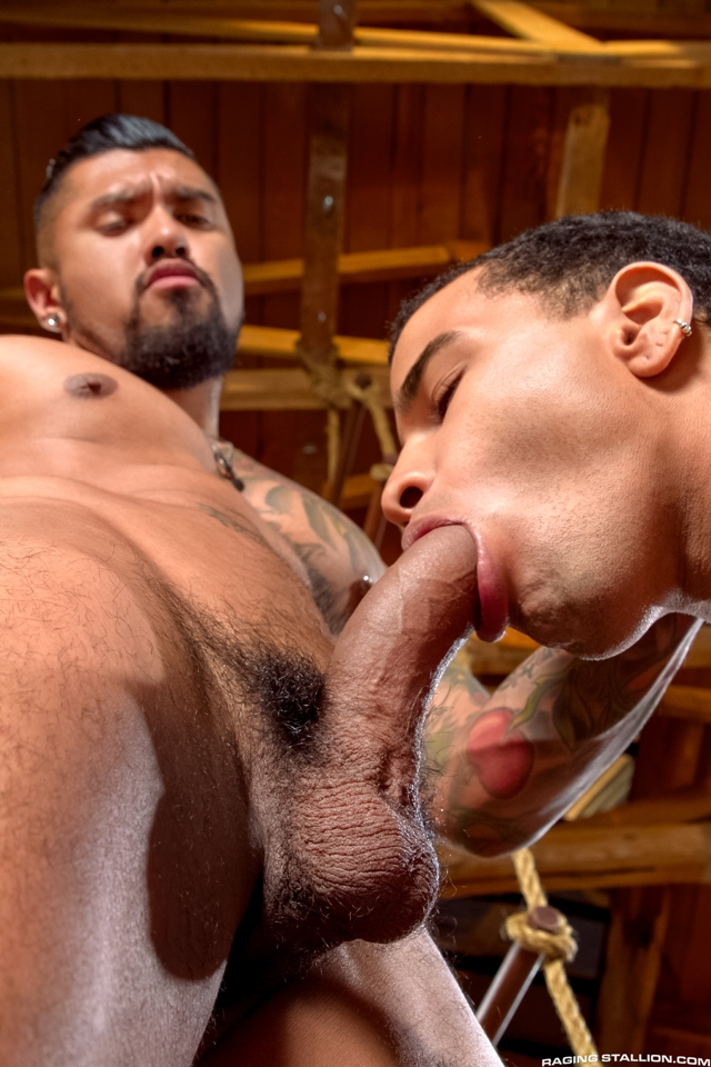 Boomer-Banks-and-Trelino-Raging-Stallion-gay-porn-stars-gay-streaming-porn-movies-gay-video-on-demand-gay-vod-premium-gay-sites-002-male-tube-red-tube-gallery-photo