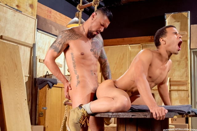 Boomer-Banks-and-Trelino-Raging-Stallion-gay-porn-stars-gay-streaming-porn-movies-gay-video-on-demand-gay-vod-premium-gay-sites-012-male-tube-red-tube-gallery-photo