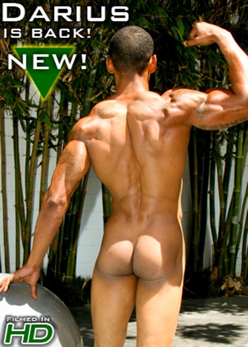 IslandStuds-Horse-hung-Honolulu-muscle-boy-Darius-King-Afro-American-big-thick-black-cock-full-erection-004-nude-men-tube-redtube-gallery-photo