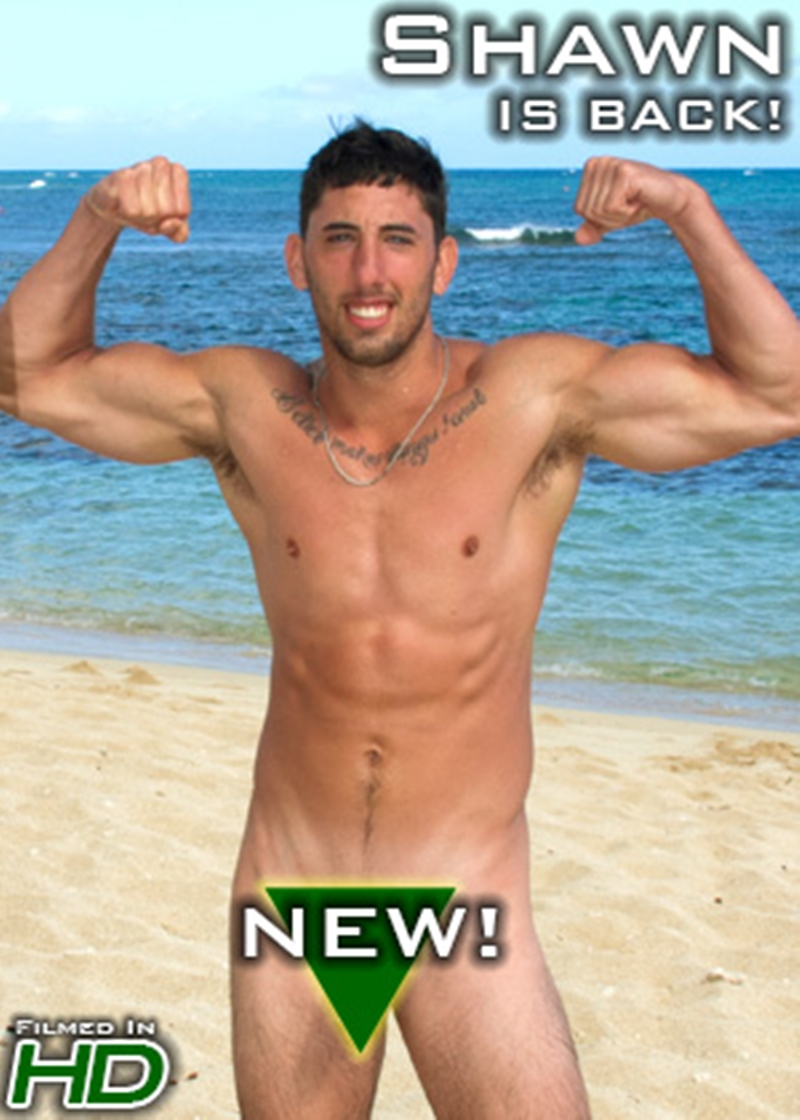 IslandStuds-big-muscle-butt-King-Dong-surfer-Shawn-low-hanging-balls-big-cock-sports-college-surfing-basketball-football-soccer-baseball-player-013-tube-download-torrent-gallery-sexpics-photo