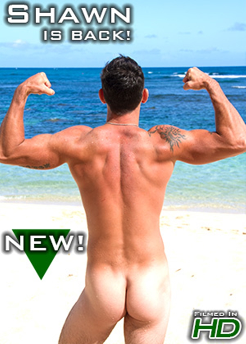 IslandStuds-big-muscle-butt-King-Dong-surfer-Shawn-low-hanging-balls-big-cock-sports-college-surfing-basketball-football-soccer-baseball-player-014-tube-download-torrent-gallery-sexpics-photo