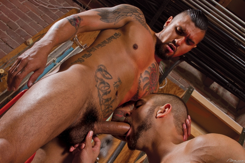 FalconStudios-Boomer-Banks-Brock-Avery-muscle-ink-balls-sucking-rimming-fucking-ass-crack-cums-facial-002-tube-download-torrent-gallery-sexpics-photo