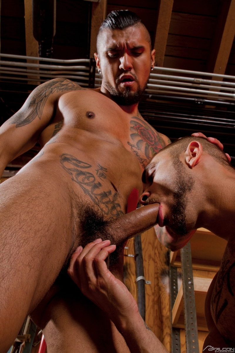 FalconStudios-Boomer-Banks-Brock-Avery-muscle-ink-balls-sucking-rimming-fucking-ass-crack-cums-facial-003-tube-download-torrent-gallery-sexpics-photo