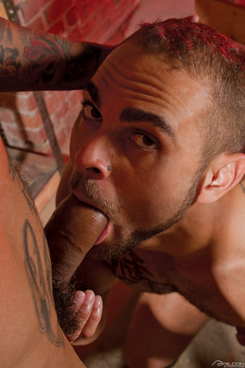 FalconStudios-Boomer-Banks-Brock-Avery-muscle-ink-balls-sucking-rimming-fucking-ass-crack-cums-facial-005-tube-download-torrent-gallery-sexpics-photo