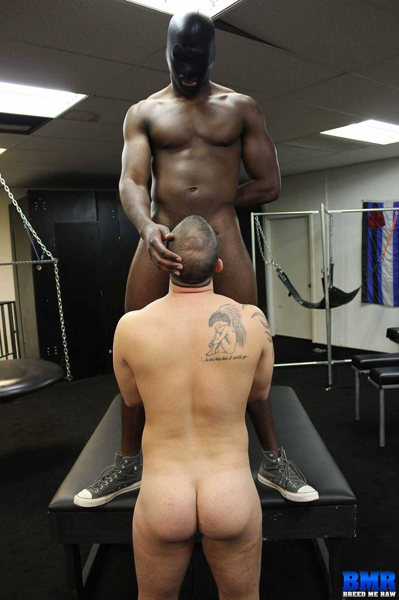 BreedMeRaw-Huge-black-cock-PHAT-young-white-ass-Chip-Young-bubble-butt-James-Django-black-fuck-cock-sucked-asshole-rimming-014-gay-porn-tube-star-gallery-video-photo
