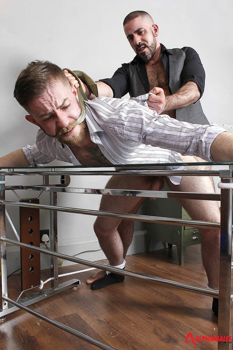 Alphamales-Michel-Rudin-boss-Alfie-Stone-suit-underwear-big-cock-fucked-cum-load-tight-hairy-ass-hole-wanks-017-tube-download-torrent-gallery-sexpics-photo